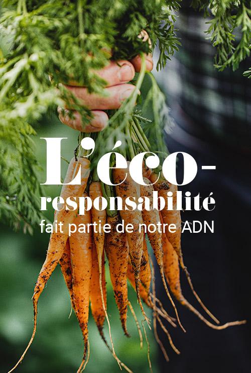 L'éco-responsabilité fait partie de notre ADN